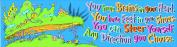 Eureka Dr. Seuss Classroom Banner, Oh The Places, 30cm x 110cm