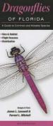 Dragonflies of Florida