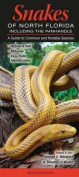 Snakes of Northern Florida Including the Panhandle