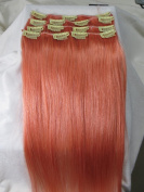 70cm 10pcs #33/#60/#99j/#613/#8-613/#pink 2014 Spring Fashion Trend Human Hair Remy Straight Clips in Extensions Wholesale 140g
