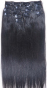 70cm 10pcs #1 #1b #2 #4 #6 #8 #10 #12 2014 Spring Fashion Trend Human Hair Remy Straight Clips in Extensions Wholesale 140g
