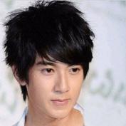 Handsome Natural Short Straight Wigs-black-mens