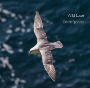 Wild Looe (Pocket Cornwall)