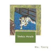 Sheba's Miracle