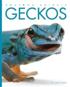 Amazing Animals Geckos