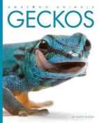 Amazing Animals Geckos