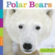 Seedlings Polar Bears