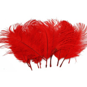 Nsstar Home Decor Ostrich Feathers 10-20cm Pack of 50pcs