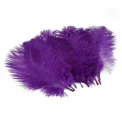 Nsstar Home Decor Ostrich Feathers 10-15cm Pack of 50pcs