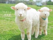 Makiba: Cute Farm Animals