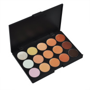 Evalley Cosmetics Professional Pro 15 Colour Blusher Cheek Colour Face Concealer Camouflage Foundation Makeup Palette