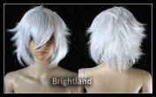 Flyingdragon New Short Silver Wig