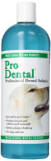 ProDental Solution Pet Toothbrushes and Toothpastes