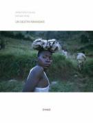 Un Destin Rwandais (24x36) [FRE]