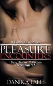 Pleasure Encounters