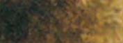 Watercolour 10ml Burnt Umber