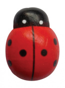MAGNETIC PHOTO CABLE LADYBUG