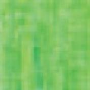Chubby Coloured Pencil Apple Green