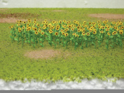 Sunflowers 8/Pkg-