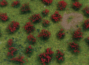 Architectural Model Flowering Red Meadow Sheet