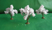 Architectural Model Cherry Trees