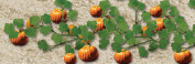 Architectural Model Pumpkins 3.5cm 2-Pack
