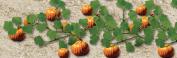 Architectural Model Pumpkins 3.5cm 2-Pack