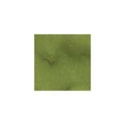Lindy's Stamp Gang Flat Fabio 60ml Bottle-Greased Lightnin' Green