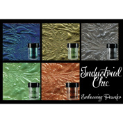 Lindy's Stamp Gang 2-Tone Embossing Powder .150ml 5/Pkg-Industrial Chic