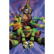 Teenage Mutant Ninja Turtles(TM) Team Poster 60cm x 90cm -