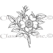 Class Act Cling Mounted Rubber Stamp 8.3cm x 14cm -Wild Rose
