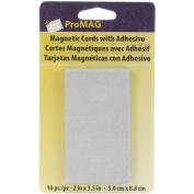 Adhesive Business Card Magnets 10/Pkg-5.1cm x 8.9cm