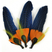 Natural Feather Picks 3/Pkg-13cm - 1.3cm Blue/Sienna