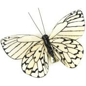 Butterfly On Clip 7cm 1/Pkg-Black/Cream