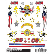 Pine Car Derby Dry Transfer Decal 10cm x 13cm Sheet-Freedom Forever