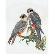 Falcons On Linen Counted Cross Stitch Kit-46cm - 2.2cm x 60cm 32 Count