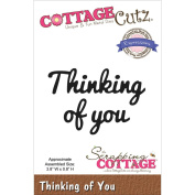 CottageCutz Expressions Die 9.7cm X.20cm -Thinking Of You