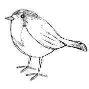 Magenta Cling Stamps 8.9cm x 10cm -Sketched Robin