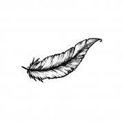 Magenta Cling Stamps 1.3cm x 3.8cm -Small Feather