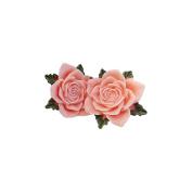 Junque & Gems Resin Flowers 2/Pkg-Peach Roses