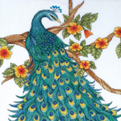 Peacock Counted Cross Stitch Kit-36cm x 36cm 14 Count