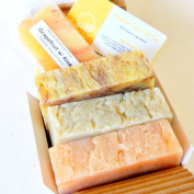Organic Handmade Soap Gift Set (3 Bars, 130ml Each, 85% Organic Ingredients) - Bergamot Bliss, Chamomile Neroli, Ginger Lime w/ Aloe *** PERFECT FATHER'S DAY GIFT!! ***