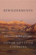 Bewilderments