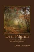 Dear Pilgrim
