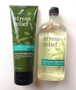 Bath and Bodyworks Stress Relief Eucalyptus Spearmint Gift Set