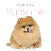 The Little Book of Sunshine
