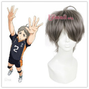 ROLECOS Mens Short Straight Anime Cosplay Wigs Fluffy Synthetic Hair Wig Grey