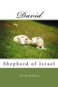 David: Shepherd of Israel
