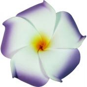 Foam Flower Medium Hair Clip Plumeria Lilac, White