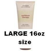 Aveda Caribbean Therapy Body Cleanser 16oz/473ml PROFESSIONAL size